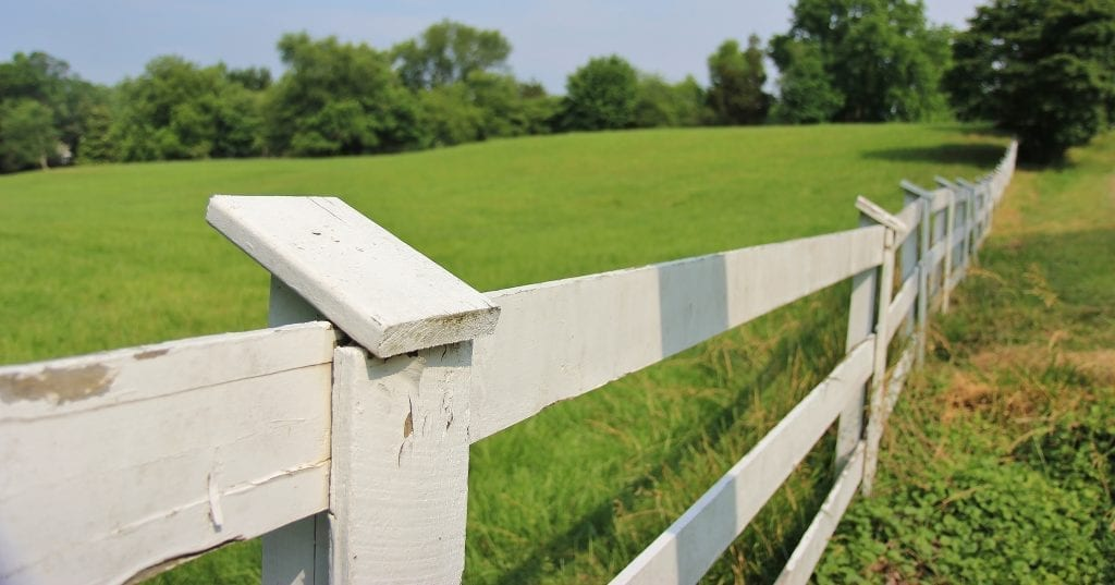 Maryland Fence Laws & Adverse Possession - Longman & Van